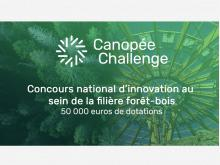 Vignette Canopee Challenge